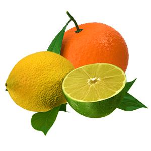 vůně Citrusové plody